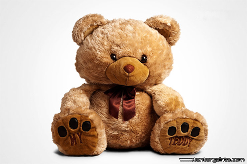 hadiah-teddy-bear